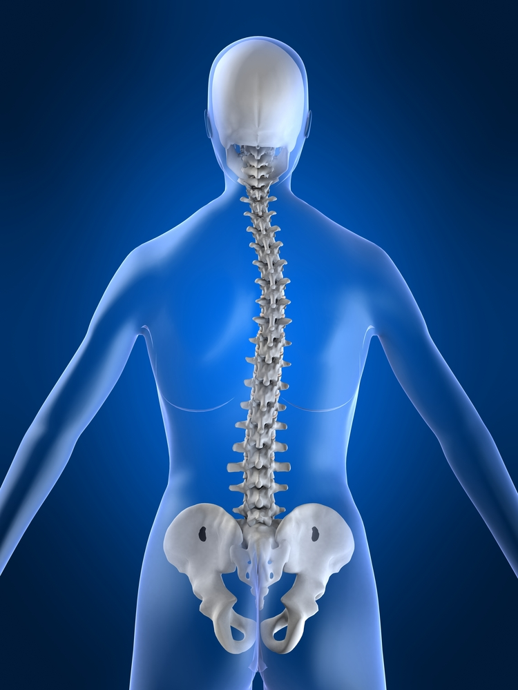 Nutrients For Back Pain