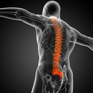 FDA Trial on P-15 published in the Spine Journal