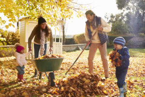 12 Tips to Avoid Lower Back Pain While Raking Leaves